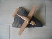 avion robin 005